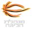 Israel Basketball Super League